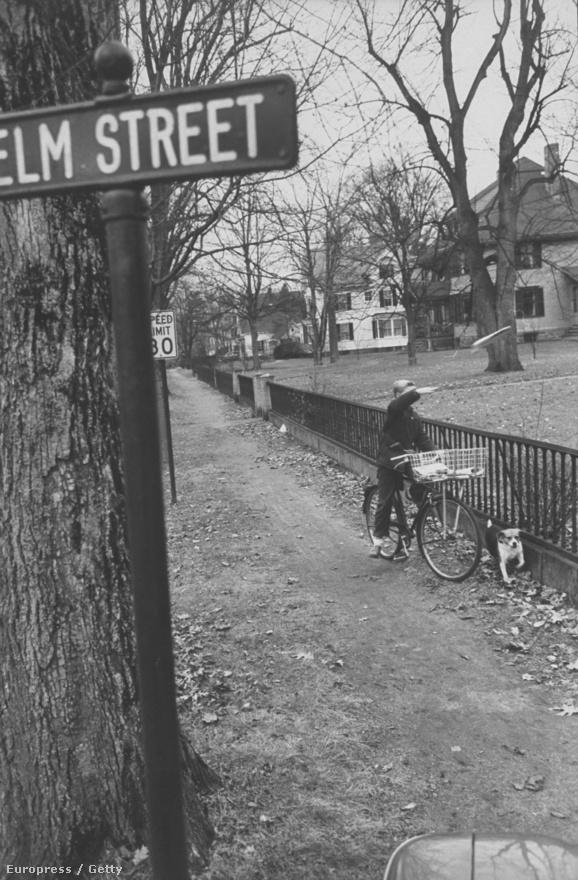 Nem rémálom: egy újsághordó fiú a Boston Herald legfrissebb számát hajítja egy előfizető kertjébe az Elm utcában. A bostoni rém története akkor kezdődött, amikor az 55 éves Anna Sleserst 1962. június 14-én holtan találták fürdőszobájának padlóján. A vizsgálat megállapította, hogy az elvált asszonyt valamilyen tárggyal szexuálisan molesztálták, majd fürdőköpenyének övével fojtották meg.