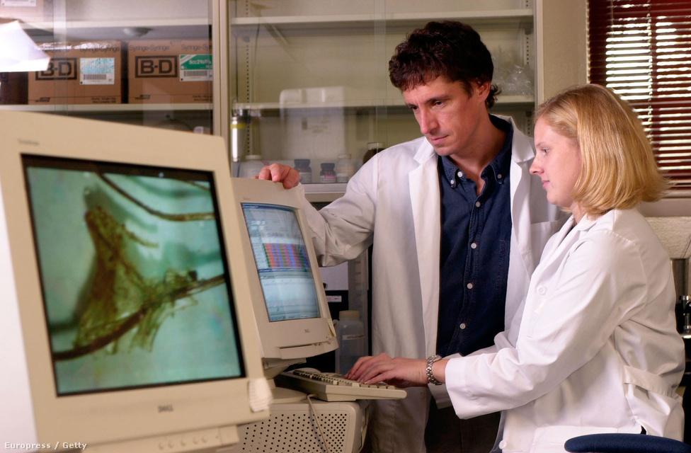 Jennifer Dreier és David Foran, a Geroge Washington Egyetem kutatói a Mary Sulliven holttestéről vett DNS-mintát elemzik. A vizsgálat kimutatta, hogy a nő ágyékáról származó nyomok nem DeSalvotól származnak.