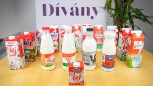 Teszt: melyik a legfinomabb dobozos tej?