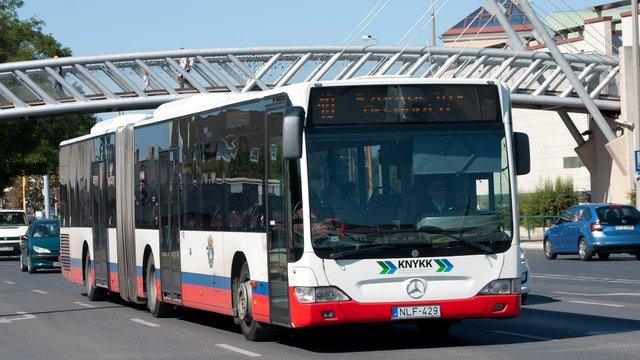 Székesfehérvári közlekedés - 2019