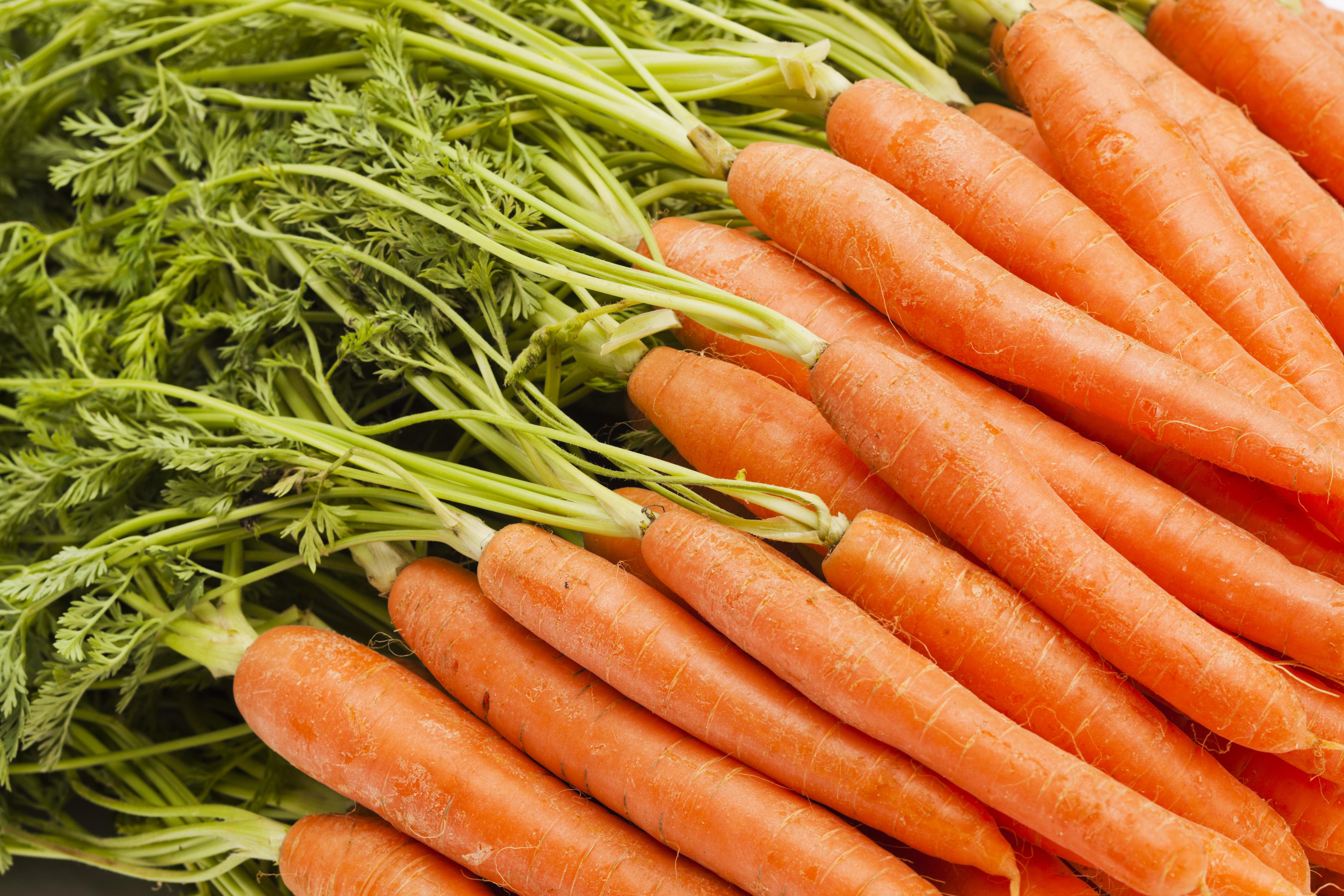 Mono-diéta hatékony fogyás. A leghatékonyabb mono-diéta (vélemény)