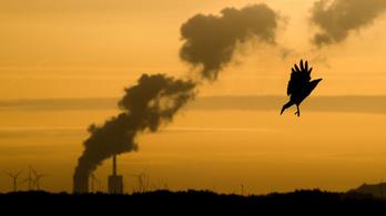 Tovább nőtt a szén-dioxid-kibocsátás