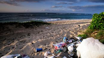 Hawaiinál hétszer annyi a műanyag a tengerben, mint a hal