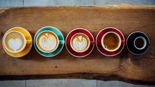 Hogyan menthetjük meg a kávét a klímaváltozástól?