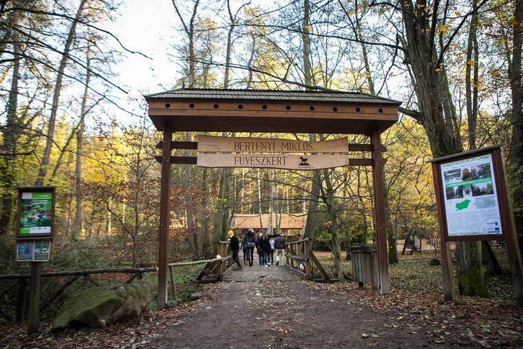 Szintén a parkerdőben, a Telgárthy-rét feletti hegyoldalban van az egész évben látogatható Bertényi Miklós Füvészkert, ahol egy sor különleges növényfaj megcsodálható, a közelben étkezési lehetőség és hatalmas erdei játszótér is van