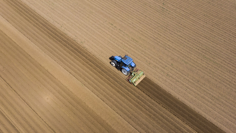 Milliárdos állami kártérítés jár egy agrárcégnek