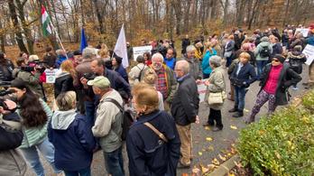 Tüntetés a Normafánál: Ha kivágják a fákat, akkor az Európai Bizottsághoz fordulunk!