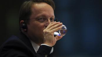 A magyar kormány politikáját kell értékelnie Várhelyinek