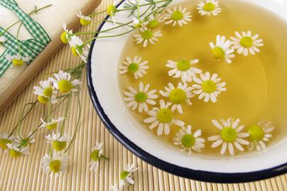 kamilla-forrazat-tea-gyogynoveny