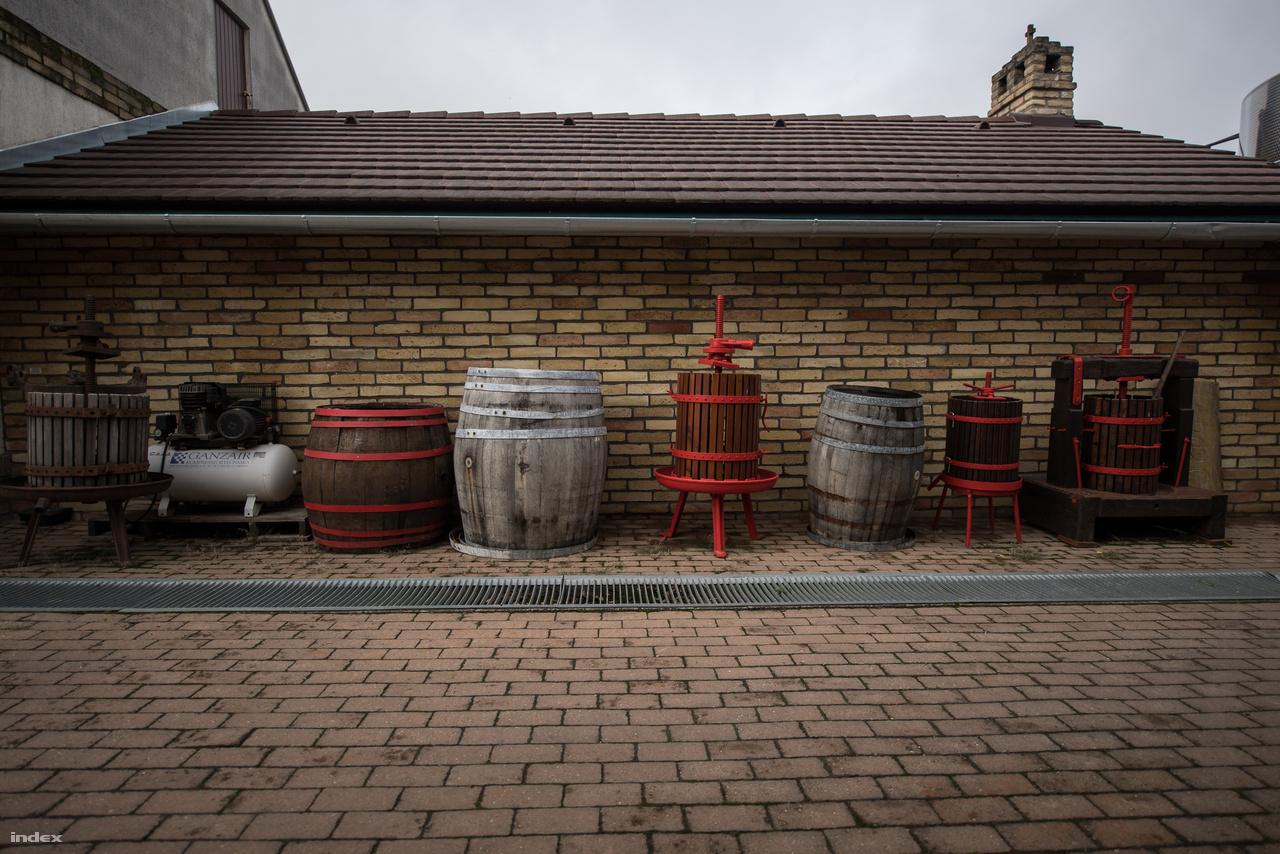 """A Koch Borászat pár év alatt kinőtte a császártöltési pincét, és a borászat  1996-ban költözött a jelenlegi helyére, az üzem teljes kapacitása 18 000 hl. """"A szőlészetben az a jó, hogy a kicsik és a nagyon is jól tudják csinálni. Most 150 hektáron dolgozunk Hajós-Baján, és 10 hektáron vagyunk Villányban. Itt kizárólag kék szőlővel foglalkozunk, a a hajós-bajai 150 hektár legnagyobb része pedig cserszegi fűszeres, de vannak kadarka, pinot noir, kékfrankos, chardonnay, ottonel muskotály, rajnai rizling, cabernet sauvignon és cabernet Franc tőkék is. 2002 óta készítünk palackos csendes borokat, 2016 óta már pezsgővel is foglalkozunk. A tételeink  80 százalékát Magyarországon adjuk el, de Lengyelországba, Franciaországba, Japánba is szállítunk.  Az utóbbi pár évben biodinamikus borokkal is próbálkozunk, már 30-40 hektár ilyen művelés alatt van. Mennyiséget nem növelünk évek óta, inkább elhagyunk bizonyos borkategóriákat."""