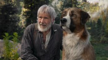 Harrison Ford úgy ment kutyát, ahogy senki