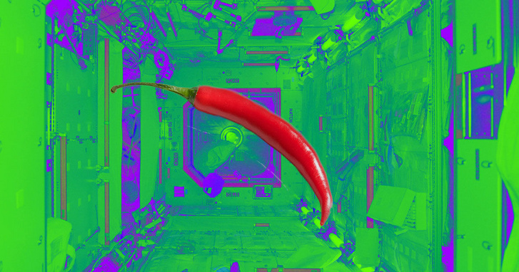 nasa-planning-to-grow-chili-peppers-on-space-station-1200x630