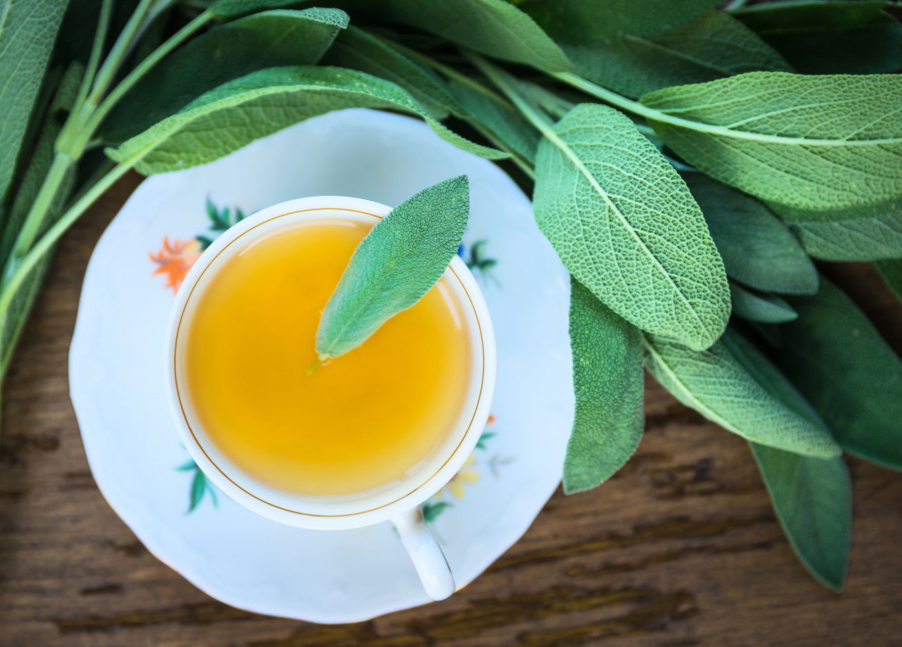 zsalya-tea