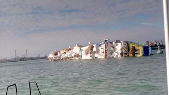 Tizennégyezer birkával a fedélzetén borult fel Románia közelében egy hajó