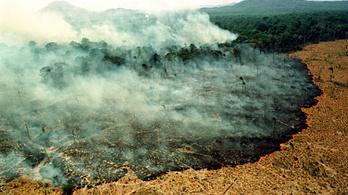 Önkéntes tűzoltókat vádolnak erdők felgyújtásával Brazíliában
