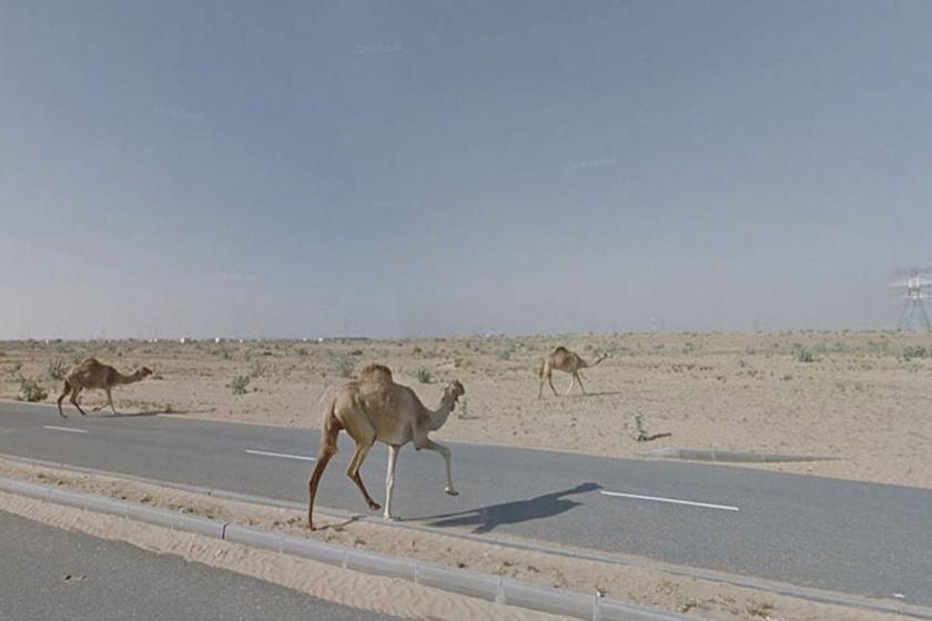 Sardzsa, Egyesült Arab Emírségek.