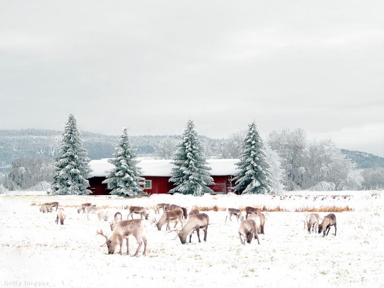 Lappföldnél keresve sem találhatsz hangulatosabb téli tájat