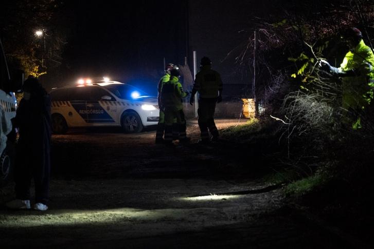 A Pest Megyei Rendőr-főkapitányság nyomozói 2019. november 27-én délután egy albertirsai ingatlan pincéjében elásva egy női holttestet találtak