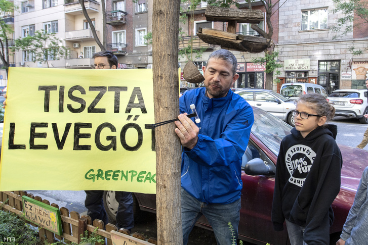 Simon Gergely a Greenpeace Magyarország regionális vegyianyag-szakértõje légszennyezettség-mérõ csövet szerel fel az a Budapest School épülete elõtti fára