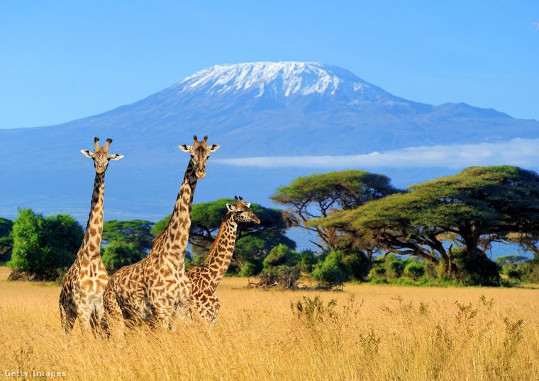 A Kilimandzsáró Tanzánia és egyben Afrika legmagasabb hegye