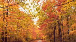3 csodás őszi túracélpont a Dunakanyarban