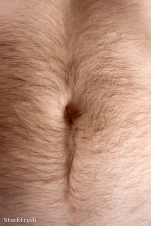 stockfresh 1107535 male-hairs-belly-bellybutton sizeM