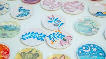 Agar art: múlandó műalkotások bacilusokból