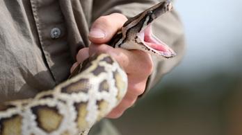 331 invazív állatfajt találtak az amerikai nemzeti parkokban