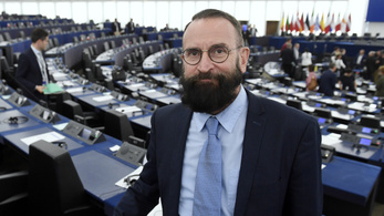 Fidesz MEP issues apology after claiming Spain holds political prisoners