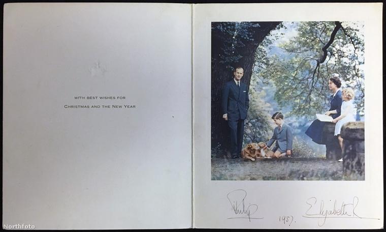 1957-ben küldték az első színes fotót, idilli jelenet kutyákkal!