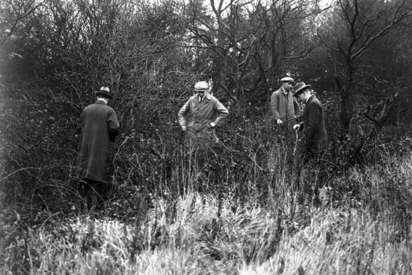 Rendőrök fésülnek át egy erdős részt az írónő után kutatva