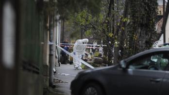 Húsz év fegyházat kapott a békásmegyeri óvónő gyilkosa