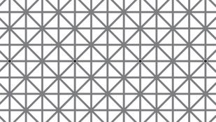Hány fekete korongot látsz a rácsokon?