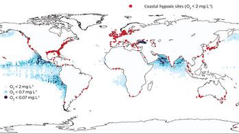 Egyre több a halálzóna az óceánokon a klímaváltozás miatt