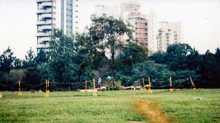 Elkülönülten, őrrel Senna sírja, a fa alatt