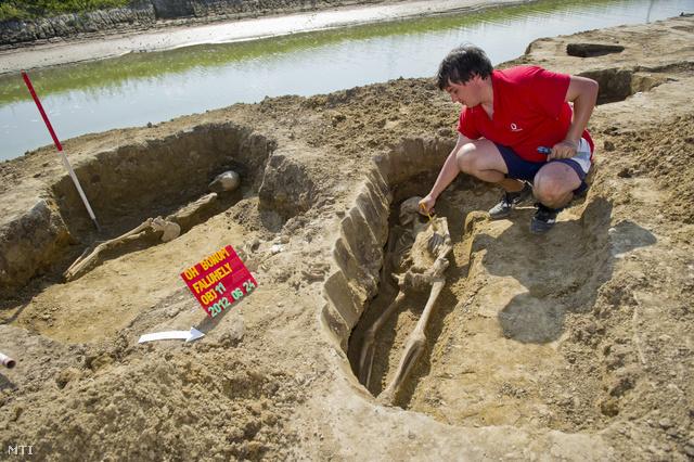 Harmincnyolc Árpád-kori sírra bukkantak Orosháza határában szombaton.