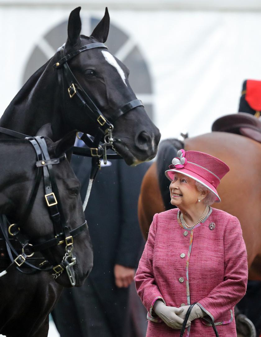 erzsébet királynő lóval