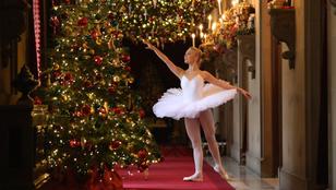 Ha karácsony, akkor Diótörő – pedig a kritikusok nem jósoltak nagy jövőt neki