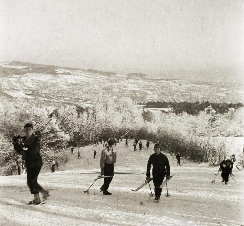 Amint leesett az első hó, a Normafa megtelt hangosan zsibongó csoportokkal. A kép 1936-ban készült.