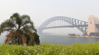 Közegészségügyi vészhelyzet kihirdetését kérik orvosok Sydneyben
