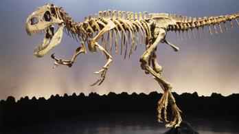 Már a dinoszauruszok is szenvedtek a sok szén-dioxidtól