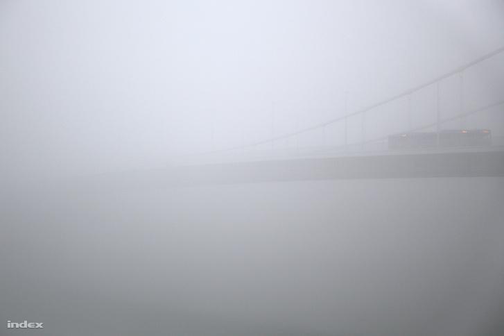 Csuklós busz az Erzsébet hídon