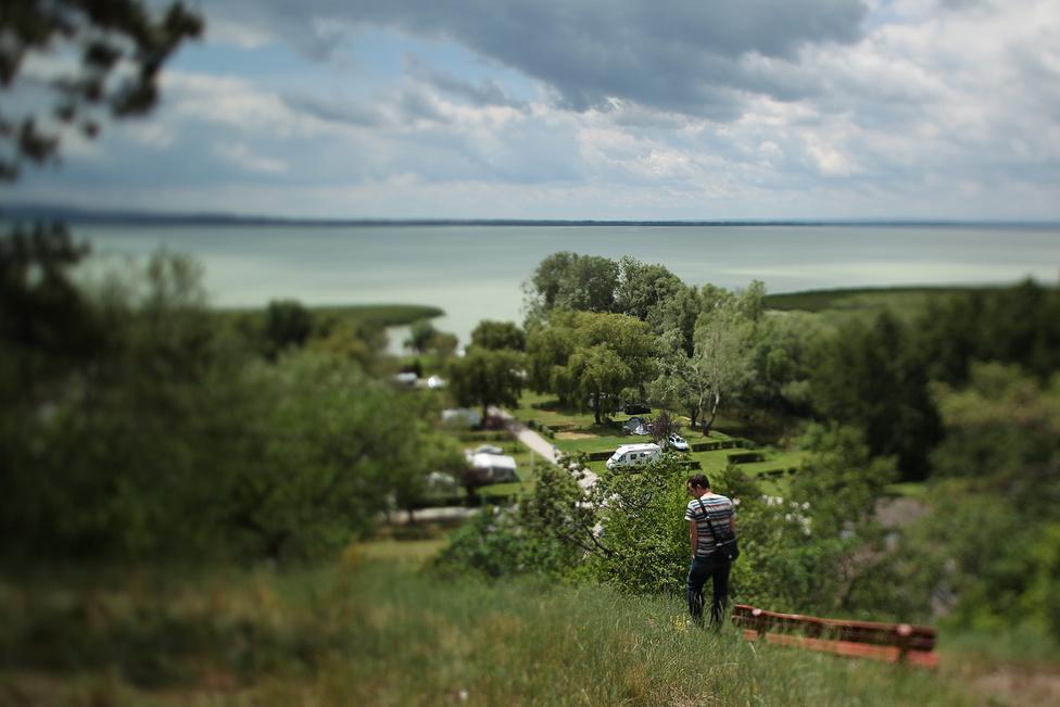 """""""Ó, az SCD"""" - fogadták stábunkat Vonyarcvashegyen is, ahol a kemping helyén ökufalut tervezett még pár éve az ingatlanfejlesztő. """"Teknősfalu, az volt a terv, mert a kápolnadomb alatt, a homokos részen teknősök élnek"""" - mesélte a községházán a turisztikai információs pont munkatársa. A község amúgy sokkal jobban járt, mint a többi település, ahol az SCD végül nem valósította meg a terveit. A Balaton tán legszebb kempingje legalább működik, és bár nekünk nem volt időnk keresni, de a vállalkozók mocsári teknősöket is megfigyelhetnek természetes környezetükben."""