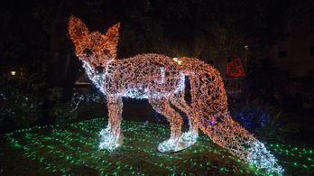 A karácsonyi díszkivilágítás is szög a bolygó koporsójába?