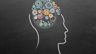 5 dolog, amivel csúcsformába hozhatod az agyad