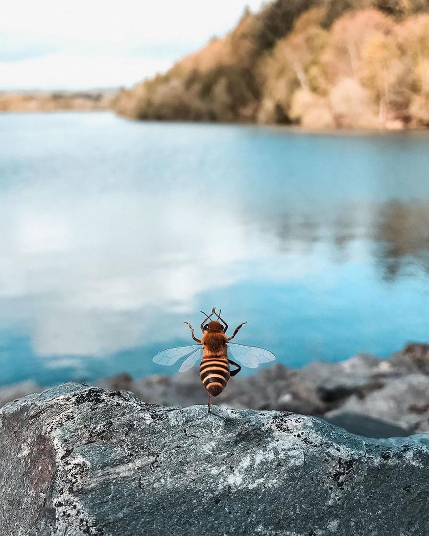 A mindennapi küzdelem a méhek megmentéséért bizony nem könnyű. Még szerencse, hogy a jóga segít ellazulni és feltöltődni.