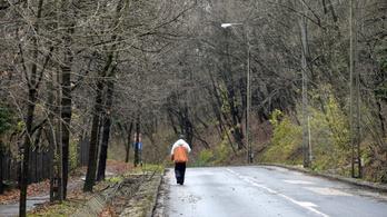 Már a polgármester is a Budakeszi út dugómentesítését sürgeti