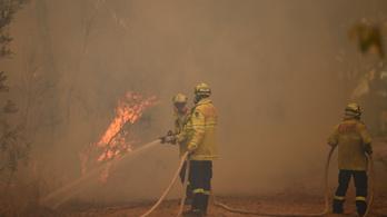 Szükségállapotot hirdettek ki Ausztráliában a bozóttüzek miatt