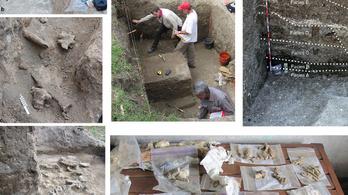 Jóval tovább élt a Homo erectus, mint eddig gondoltuk
