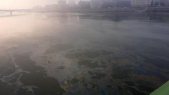 Újabb hatalmas olajfolt úszott a Dunán